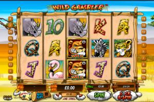 Wild Gambler online