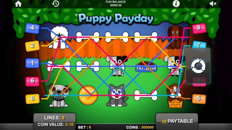 Puppy Payday kostenlos spielen 1