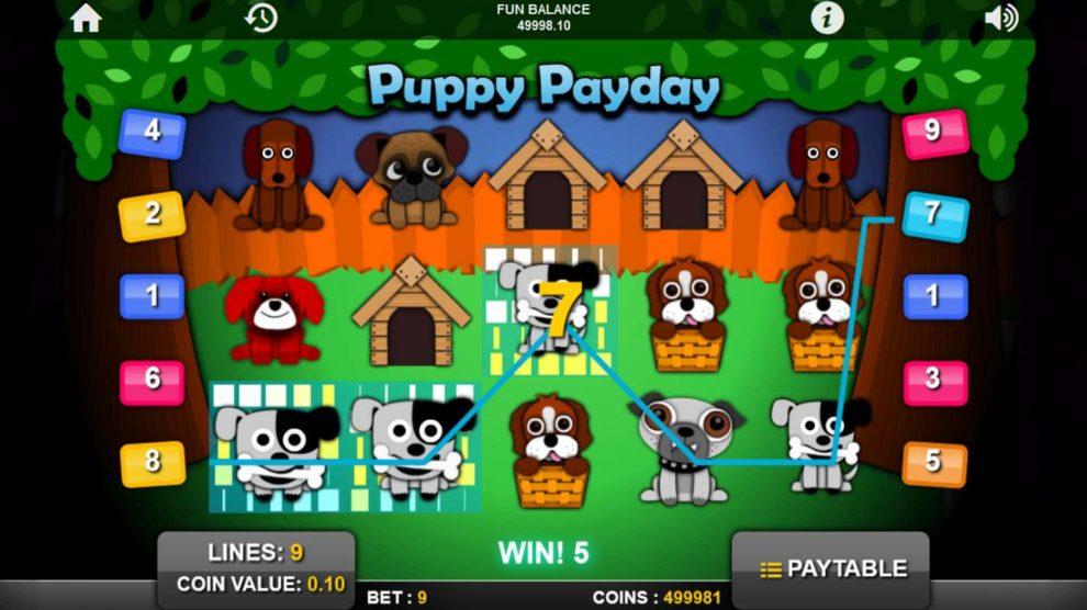 Puppy Payday kostenlos spielen 3